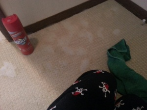 Note the festive christmas colors of the carpet cleaner and rag